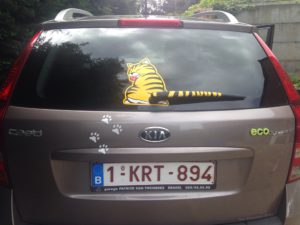 autosticker cat